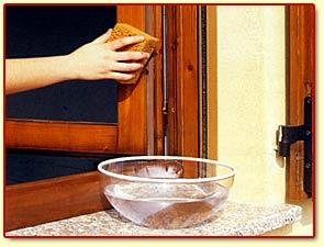 Venturato e salmistraro snc serramenti in legno lamellare - Manutenzione finestre in legno ...